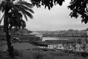 Glebe, SRC 24123 Bernard Smith Collection, City of Sydney Archives