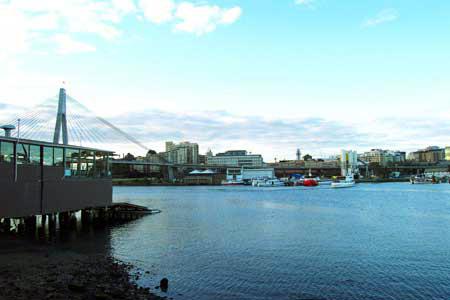 Blackwattle Bay with ANZAC Bridge in the background.