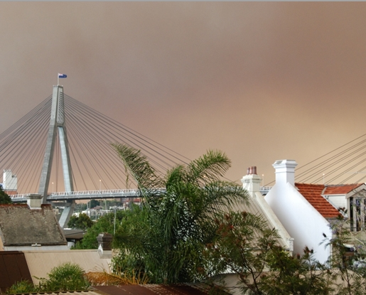 Taken on the first Thursday of the recent bushfires from the backyard of 79 Ferry Rd. There was a small patch of blue sky on the western horizon, which lit the Anzac Bridge and houses in a spooky bluish light against the background of a smoky sky.  (image: Bruce Davis)