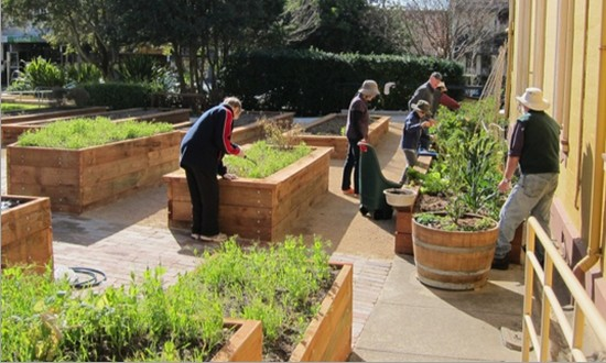 St Helen's community gardeners hard at work. (Photo : Jan Macindoe)