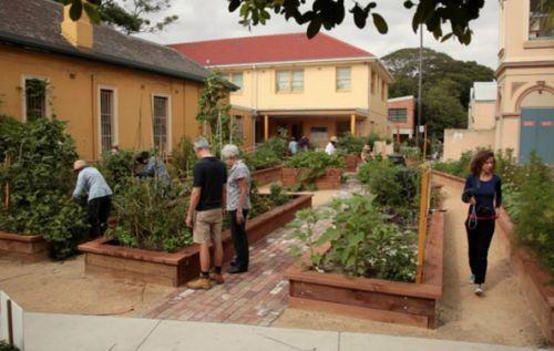 Glebe Community Garden during filming of Un dimanche à … (image: https://www.facebook.com/undimanchea)