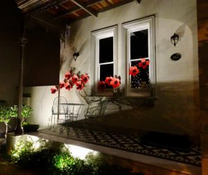 Poppies adorn the front of this Glebe house in recognition of Anzac Day 2020