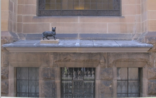 Small statue of 'Trim', Matthew Flinders' cat, which perches on a library ledge, not far from the statue of her master. (Photo: Erica Robinson)