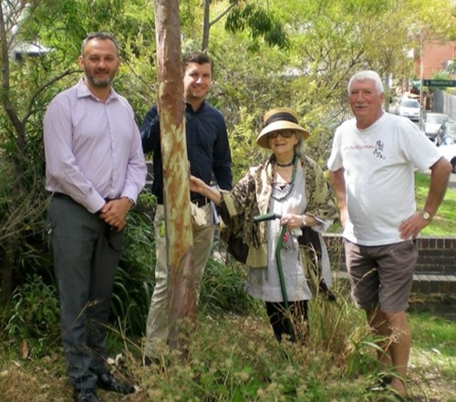Nick Criniti and Peter Day from the City of Sydney, and local residents Norma Hawkins and Bryan Herden standing beside an Angophora planted in Arthur (Paddy) Gray Reserve in memory of David Mander-Jones, a former convenor of the Society's Blue Wren Subcommittee. Bryan has taken on the task of forming a local bushcare group to assist with the continuing maintenance of the Reserve. (Image: Andrew Wood)