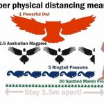 A helpful biodiversity-themed graphic for social distancing (photo: Port Phillip Ecocentre).