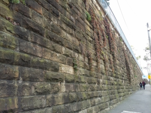 The retaining wall on Parramatta Rd, under threat from WestConnex (image: V. Simpson-Young)