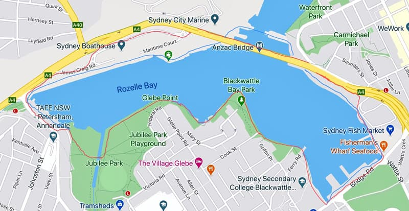 The proposed Blackwattle Bay Circular Walk. The blue line represents the proposed walk and the red line shows what is currently possible. (Image supplied by Janet Wahlquist)